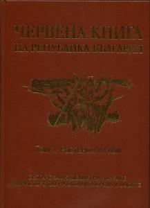 Red Book - bg-1