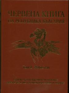 Red Book - bg-2