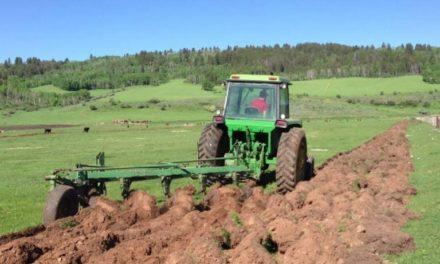 Цените на земеделските земи в България скочиха с 214% за по-малко от десетилетие