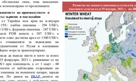 САPA: Значително по-слаб износ на наши зърнени и маслодайни култури. Русия се готви да въведе квота и мито за износ на зърно от 15 февруари
